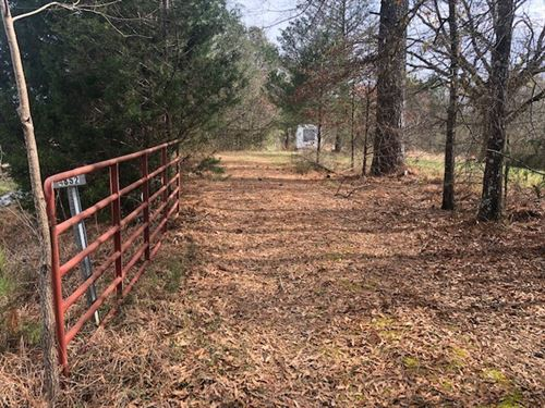 Hunting And Timber Investment : Kosciusko : Attala County : Mississippi