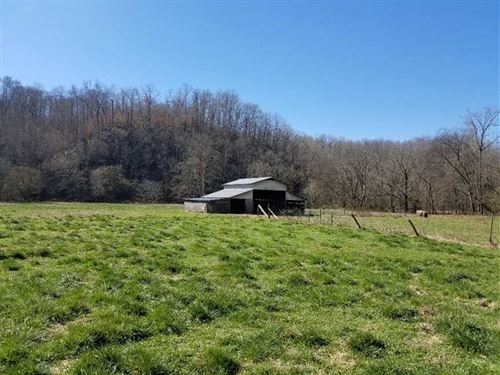 105 Acre Ranch/Farm Located in Way : Collinwood : Wayne County : Tennessee