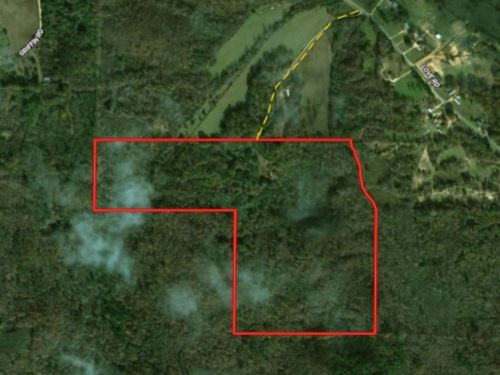 82.8 Acres In Holmes County In Lexi : Lexington : Holmes County : Mississippi