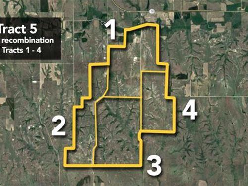 Approx 5527Ac Lot : Natoma : Rooks County : Kansas