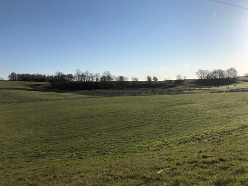 Farm, South Central Ky, Barn : Knob Lick : Metcalfe County : Kentucky