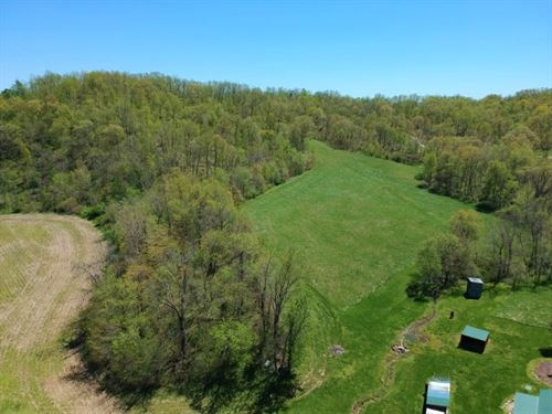 Bay Creek Bluff Farm : Nebo : Pike County : Illinois