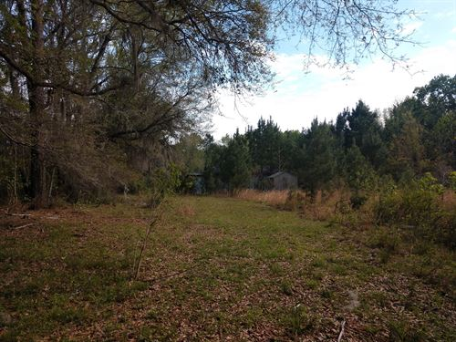 Secluded Location Close to I-95 : Yemassee : Jasper County : South Carolina