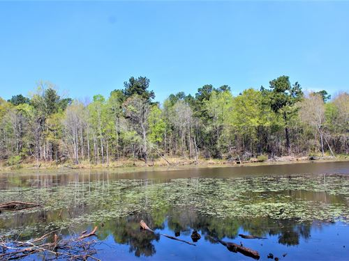 Beautiful 10+ Acre Lake : Gray : Jones County : Georgia