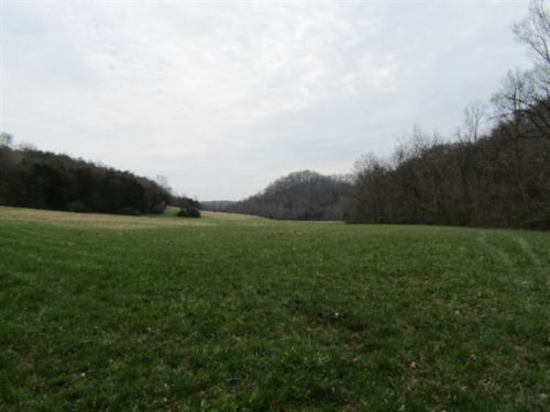 251+Ac W/Rushing Creek, Pasture : Hilham : Clay County : Tennessee