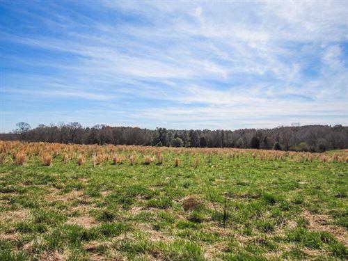 13.75 Acre Mini Farm : Woodruff : Spartanburg County : South Carolina