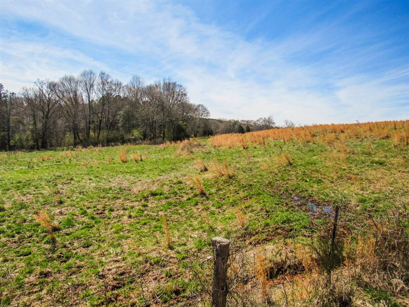 18 18 Acre Mini Farm : Ranch for Sale : Woodruff : Spartanburg County :  South Carolina