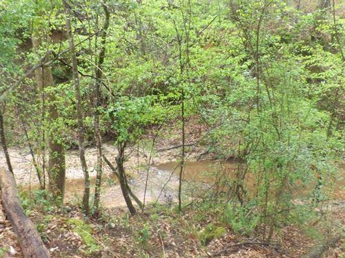 128 Acres In Jefferson Davis County : Prentiss : Jefferson Davis County : Mississippi