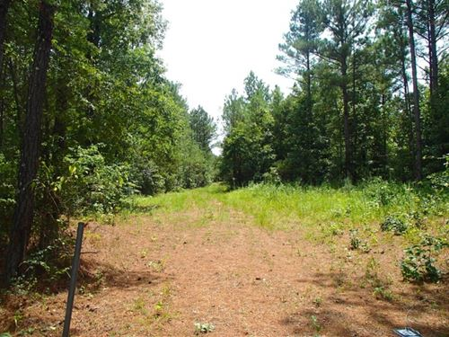 147 Acres In Winston County In Loui : Louisville : Winston County : Mississippi