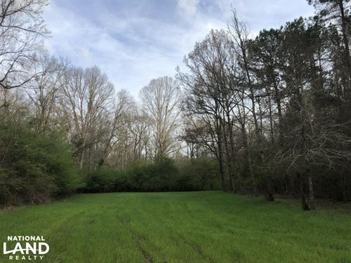 Eclectic 149 Timber And Hunting Tra : Eclectic : Elmore County : Alabama