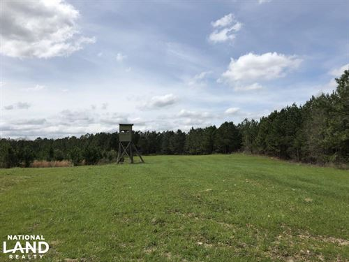 Lake Martin 450 Hunting And Timber : Eclectic : Elmore County : Alabama