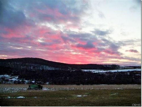 68+ Acres Certified Organic Land : Taylor : Cortland County : New York