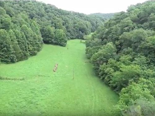 214 Acres, Oil Well Sale Pending : Albany : Clinton County : Kentucky