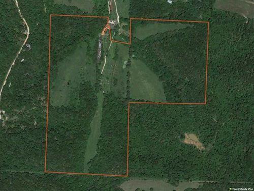 Wolfden 117 : Jane : McDonald County : Missouri