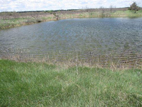 Hunting Land In Greer County : Mangum : Greer County : Oklahoma