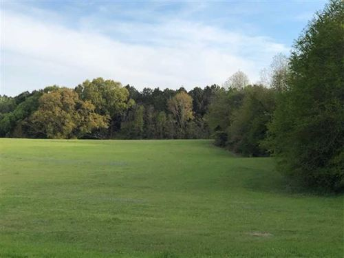 Beautiful Rolling Open Acreage on : Benton : Yazoo County : Mississippi
