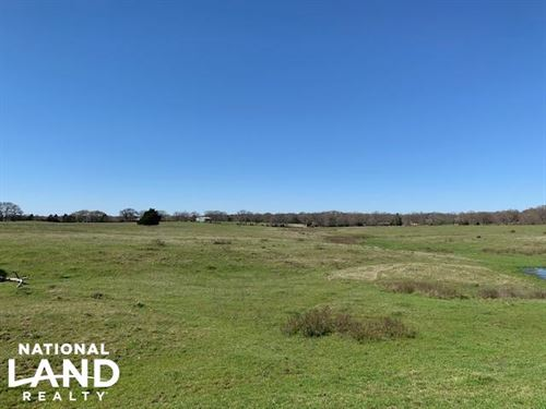 10 Acres North of Mabank, Scenic Pr : Mabank : Kaufman County : Texas
