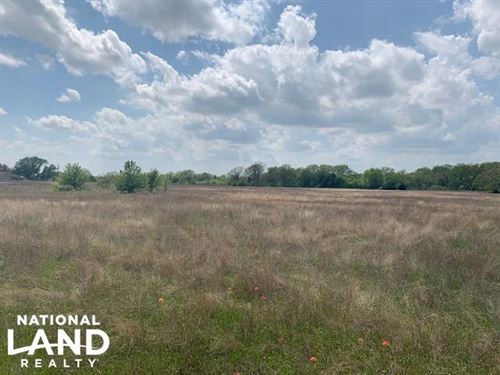 10 ac in Payne Springs, Scattered : Payne Springs : Henderson County : Texas