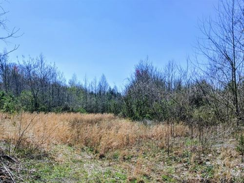 30 Acres Just Outside Of McKenzie : McKenzie : Carroll County : Tennessee