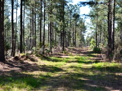 Longwood Tract : Liberty Hill : Kershaw County : South Carolina