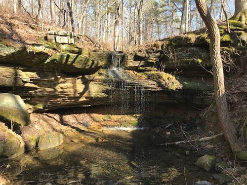 281 Acres Hunting Recreation Land : Dora : Douglas County : Missouri