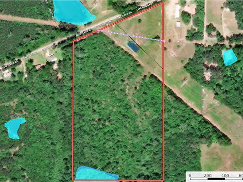 Land East Texas Tyler Wooded Creek : Tyler : Smith County : Texas