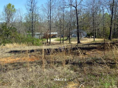 66-097 River Bluff Tract : Camden : Wilcox County : Alabama