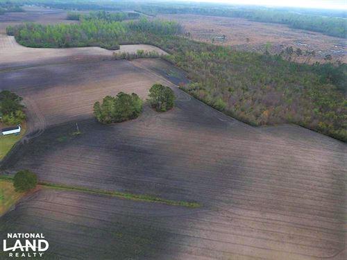 Patterson Rd Farm : Kinston : Lenoir County : North Carolina
