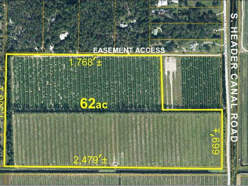62 Acre Agricultural Tract : Port St Lucie : Saint Lucie County : Florida