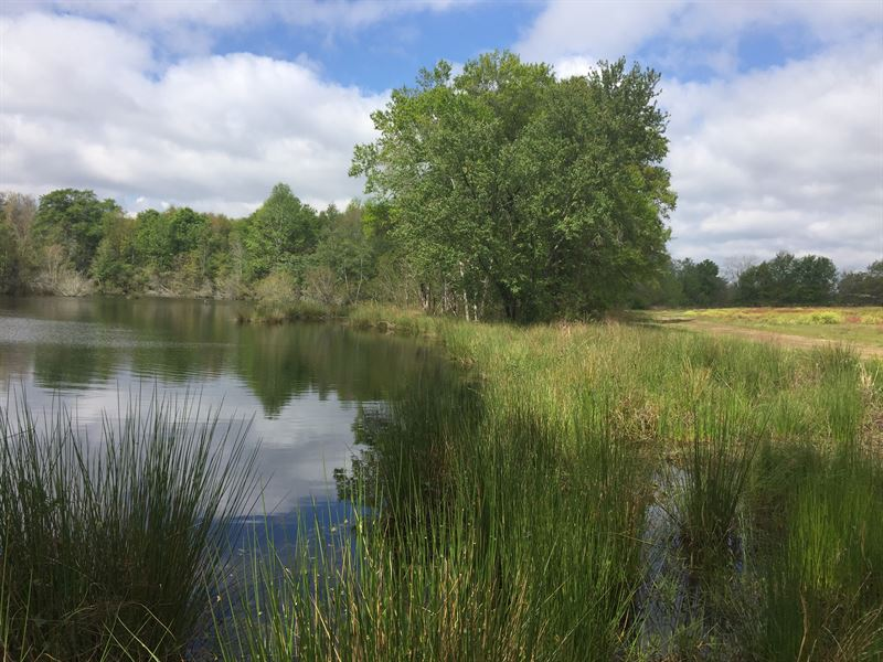 Owner Financed With Pond : Metter : Candler County : Georgia