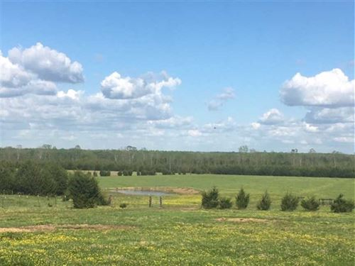320 ac Working Cattle Ranch With : Starkville : Oktibbeha County : Mississippi