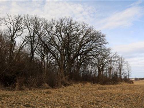 Incredible Hunting Property : Edgerton : Dane County : Wisconsin