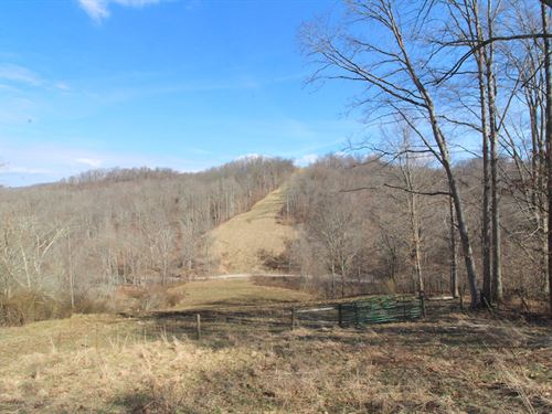 Pugh Ridge Rd, 38 Acres : Alledonia : Belmont County : Ohio