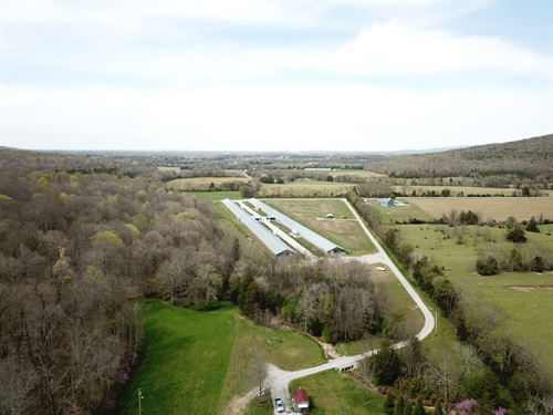 4 House Breeder Farm : Franklin : Tennessee