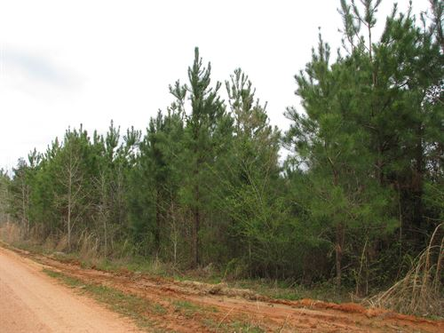 Nice Home Site In The Country : Brewton : Escambia County : Alabama