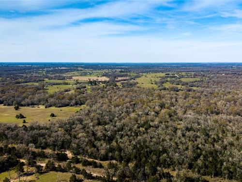 Beautiful Small Acre Tract : Madisonville : Madison County : Texas