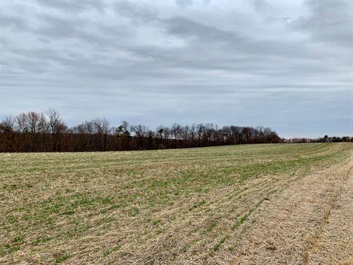 107+/- Acres Of Land In Muncy, Pa : Muncy : Montour County : Pennsylvania