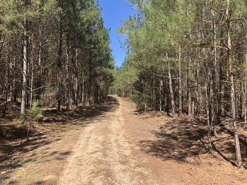 Blair Tract : Wadesboro : Anson County : North Carolina