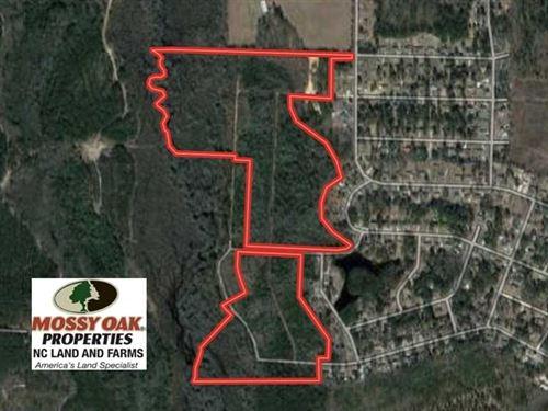 Reduced, 77 Acres of Hunting Land : Laurinburg : Scotland County : North Carolina