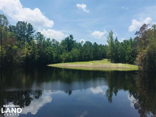 Springvale Recreational Tract With : Lugoff : Kershaw County : South Carolina