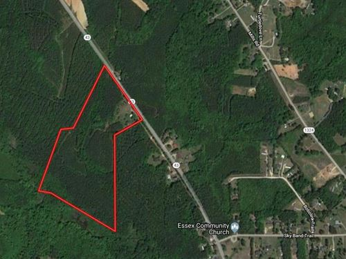 Looking For Hunters 30 Acre Tract : Hollister : Halifax County : North Carolina