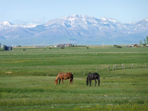 Where The Prairie Meets The Rockies : Fairfield : Teton County : Montana