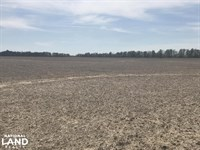 380 Acre Row Crop Farm & Duck Hunti : Sedgwick : Lawrence County : Arkansas