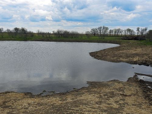 23+ Acres, Pond & Arena : Rogers : Bell County : Texas