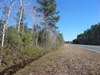 Unrestricted Land Near Gardi Commun : Jesup : Wayne County : Georgia