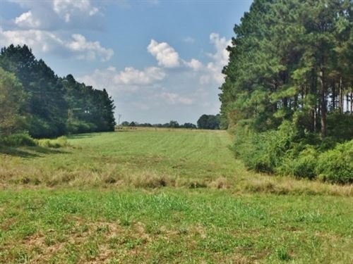 House And 105 Acres : Magnolia : Pike County : Mississippi