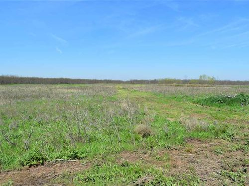 Price Reduction, 18.01 Resident : Wichita Falls : Archer County : Texas