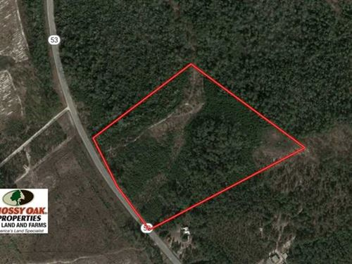Under Contract, 30 Acres of Hunti : Kelly : Bladen County : North Carolina