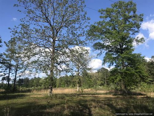 Great Country Living : Bogue Chitto : Lincoln County : Mississippi