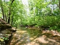 Picturesque Farm On Hurricane Creek : Waynesboro : Wayne County : Tennessee